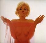 Marilyn Monroe nude behind see-through scarf in Last Session photo. Bert Stern