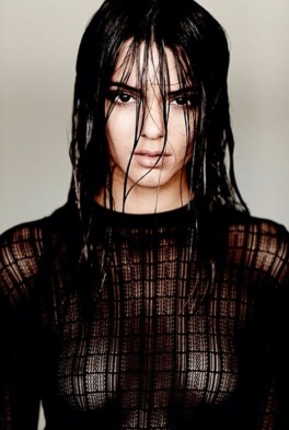 Kendall Jenner shows boobs in see-through topless photo